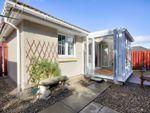 Thumbnail to rent in 31 Rowan Grove, Smithton, Inverness