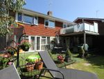 Thumbnail for sale in Maple Walk, Bexhill-On-Sea