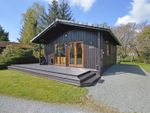 Thumbnail for sale in Elwy Valley Lodges, Llangernyw, Abergele