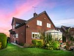 Thumbnail to rent in Myddle Hill, Myddle, Shrewsbury