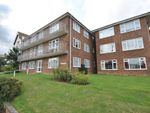 Thumbnail to rent in Magdalen Road, Bexhill-On-Sea, East Sussex