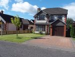 Thumbnail for sale in Hazel Place, Blairgowrie