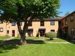 Thumbnail to rent in Joseph Conrad House, Bishops Way, Canterbury, Kent