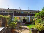 Thumbnail to rent in Broomhills, Welwyn Garden City