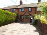 Thumbnail for sale in Lingwood Road, Blofield