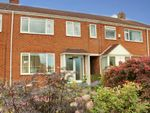 Thumbnail for sale in Norwood Grove, Beverley