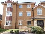 Thumbnail to rent in Falconer Way, Treeton, Rotherham, South Yorkshire