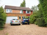 Thumbnail to rent in The Meadow, Copthorne