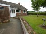 Thumbnail to rent in Ingham, Norwich