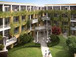 Thumbnail to rent in 31, Belmont Park, Blackheath