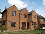 Thumbnail to rent in Ryefields, Spratton, Northampton