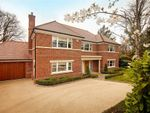 Thumbnail for sale in St Margarets Avenue, Dormans Park, Surrey