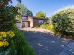 Thumbnail to rent in Rectory Dene, Morpeth