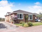 Thumbnail for sale in Moray Park Lane, Inverness