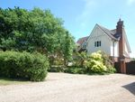 Thumbnail to rent in Harrington Close, Tiptree, Colchester