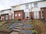 Thumbnail to rent in Spire Hill Park, Lower Burraton, Saltash