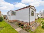 Thumbnail to rent in Home Farm Park, Nantwich