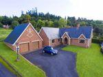 Thumbnail for sale in Poplar Drive, Welshpool, Welshpool