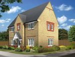 "Thumbnail to rent in ""Morpeth 2"" at Morgan Drive, Whitworth, Spennymoor"
