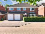 Thumbnail for sale in Covert Mead, Ashington, West Sussex