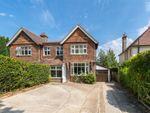 Thumbnail to rent in Tilsmore Road, Heathfield