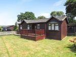 Thumbnail for sale in The Thatches, Modbury, Ivybridge