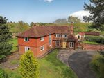 Thumbnail for sale in New Road, Landford, Salisbury, Wiltshire