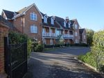 Thumbnail to rent in Regal Heights, Odiham