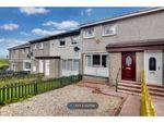 Thumbnail to rent in Redhaws Road, Shotts