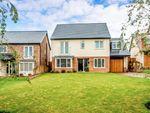 Thumbnail for sale in Montagu Avenue, Walkworth, Morpeth Northumberland, Northumberland