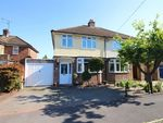 Thumbnail to rent in Maple Avenue, Braintree