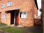 Thumbnail to rent in Celandine Drive, Luton