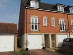 Thumbnail to rent in Camomile, Downham Market