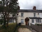 Thumbnail to rent in Lion Terrace, Ewyas Harold, Hereford