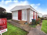 Thumbnail to rent in Thornlea Park, Wick, Littlehampton