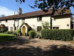 Thumbnail for sale in Brislands Lane, Four Marks, Alton, Hampshire