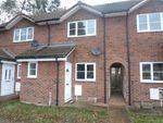 Thumbnail to rent in Homelands, Guyhirn, Wisbech