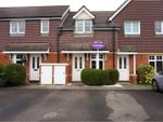 Thumbnail for sale in Terrier Close, Southampton