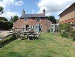 Thumbnail for sale in Dene Cottages, Back Road, Sandhurst, Kent