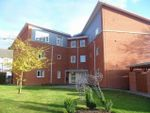 Thumbnail to rent in Powell Street, Heath Town, Wolverhampton