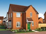 """Thumbnail to rent in """"The Coombe At Academics"""" at Western Avenue, Peterborough"""