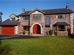 Thumbnail to rent in Chatsworth, Bangor