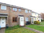Thumbnail to rent in Pound Piece, Maiden Newton, Dorchester