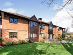 Thumbnail to rent in Broom Way, Blackwater, Camberley
