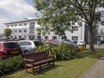 Thumbnail to rent in Kembrey Street, Kembrey Park, Swindon