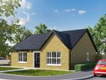 Thumbnail to rent in Site 9 Towerview Meadow, Cloughey