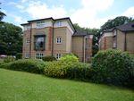Thumbnail to rent in Balmore Park, Caversham, Reading