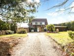 Thumbnail for sale in Haslemere Road, Liphook, Hampshire