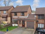 Thumbnail for sale in Northbrooke, Ashford