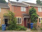 Thumbnail to rent in Finbars Walk, Ipswich
